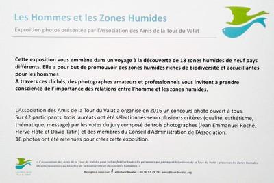 zone humide01